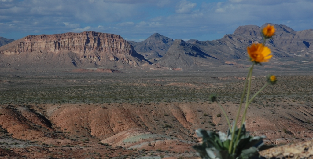 Valley of Fire B